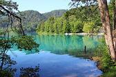 Bled lake, Slovenia — Stock Photo