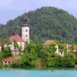 Assumption of Mary Pilgrimage Church on Bled lake — Stock Photo #64337873