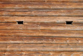 Wooden logs — Stockfoto