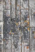 Stone grunge texture — Stock Photo