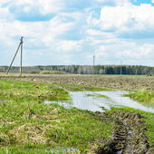 April. Puddles on the outskirts of the field — Stock Photo