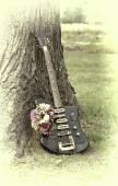 吉他和鲜花 — 图库照片