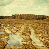 Mud on the field — Stock Photo