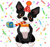 Puppy with party hat — Stock Vector