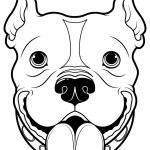 Illustration of English Bulldog — Stock Vector #66664827