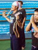 Charmer of snake on attraction — Stock Photo