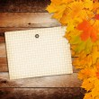 Old grunge paper with autumn maple branch leaves on the wooden b — Stock Photo #52356335