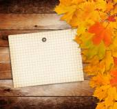 Old grunge paper with autumn maple branch leaves on the wooden b — Stock Photo