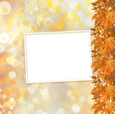 Orange autumnal branch of  tree on abstract background with boke — Stok fotoğraf