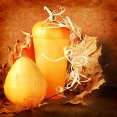Pile of pumpkins with autumn foliage on abstract background — Stock Photo