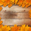 Bright fallen autumn leaves on a wooden background — Stock Photo #53278733