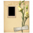 Set of old archival papers and vintage postcard with bouquet of — Stock Photo