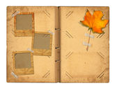 Open vintage photoalbum for photos with autumn foliage on white  — Foto de Stock