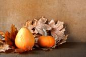 Pile of pumpkins with autumn foliage on abstract background — Foto de Stock