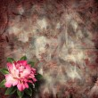 Beautiful hand drawn rose branch and sheet of paper on abstract — Stock Photo #55555497
