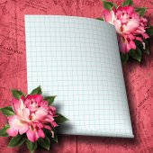 Piękne ręcznie rysowane róża oddziału i arkusz papieru na streszczenie — Zdjęcie stockowe