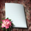 Beautiful hand drawn rose branch and sheet of paper on abstract — Stock Photo #55677539