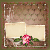 Beautiful painted rose with frames for congratulations or invita — Stok fotoğraf