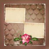 Beautiful painted rose with frames for congratulations or invita — Stock Photo