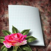 Beautiful hand drawn rose branch and sheet of paper on abstract  — Stock Photo