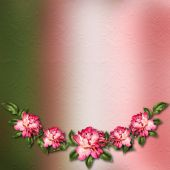 Beautiful painted rose on abstract background for congratulation — Stock Photo