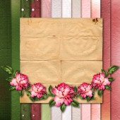 Beautiful painted rose on abstract background for congratulation — Foto de Stock