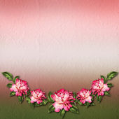 Beautiful painted rose on abstract background for congratulation — Φωτογραφία Αρχείου
