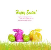 Easter eggs and funny bunny isolated on white background — 图库照片