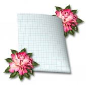 Beautiful hand drawn rose branch and sheet of paper on white iso — Stock Photo