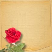 Old vintage card with a beautiful red rose on paper background — Stock Photo