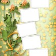 Grunge paper for congratulation with bunch of clover — Stock Photo #67754967