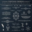 Vector vintage set. Calligraphic elements and page decoration pr — Vector de stock  #52488883