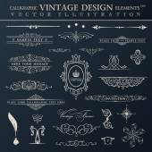 Vector vintage set. Calligraphic elements and page decoration pr — Vector de stock