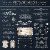 Vector set vintage. Calligraphic design elements and page decora — Stock Vector
