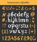 Hand dras alfabetet och brev nummer borste — Stockvektor