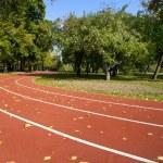 Empty treadmill in autumn park — Stock Photo #53702601