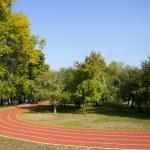 Empty treadmill in autumn park — Stock Photo #53702603