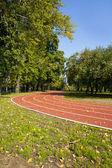 Пустой беговая дорожка в Осенний парк — Стоковое фото