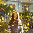 Young beautiful little girl with yellow leaves in autumn park — Stock Photo #54248865