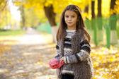 Beautifal bambina nel parco d'autunno — Foto Stock