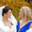 Portrait of a beautiful smiling bride — Stock Photo #55761141