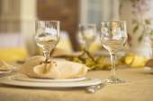 Place setting in a posh restaurant  — Stock Photo
