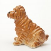 Shar pei puppy — Stock Photo