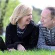Portrait of a happy mature couple outdoors — Stock Photo #70832851