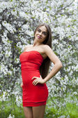 Portrait of a beautiful young girl in red dress on the backgroun — ストック写真