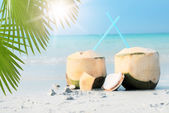 Coconut cocktails on tropical beach — Stock Photo