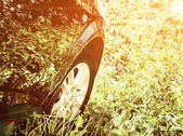 Black car in middle of field — Stock Photo