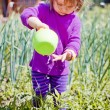 Cute little girl watering summer garden — Stock Photo #63649521