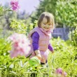 Cute little girl watering summer garden — Stock Photo #63649821