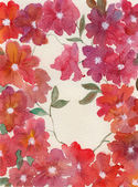 Red flowers background — Stock Photo